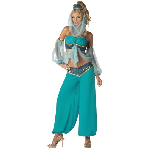 Harem's Jewel Costume – Large – Dress Size 10-14 image