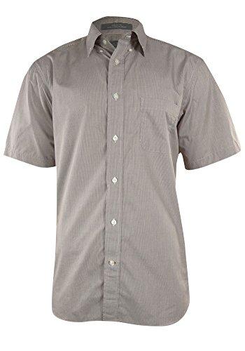Daniel Cremieux Signature Collection Egyptian Cotton Mini Graph Shirt (L, Brown)