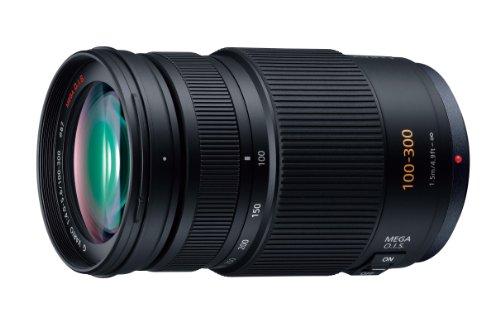 Panasonic LUMIX G VARIO 100-300mm F4.0-5.6 MEGA O.I.S H-FS100300