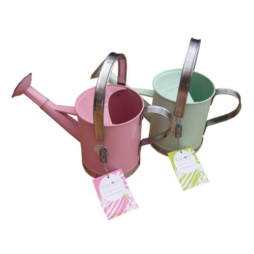 Burgon & And Ball Metal Indoor Watering Can Green Or Pink Garden Plants Gardening Gift Soft Green