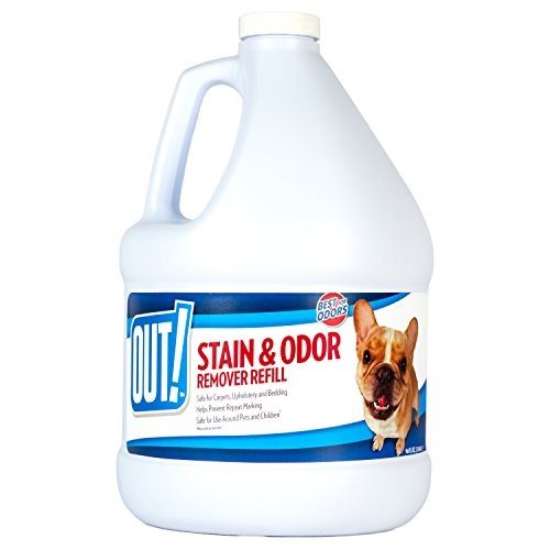 OUT! Pet Stain and Odor Remover Refill, 96