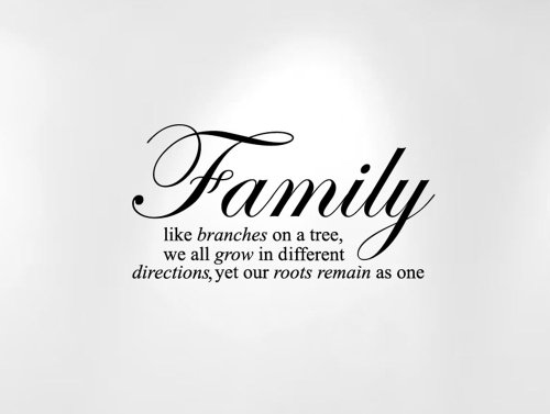 Innovative Stencils Family Like Branches on a Tree... Wall Decal Sticker Quote (24