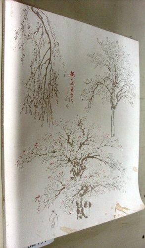 talking-in-flowers-japanese-botanical-art