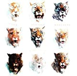 Nine Lives by Von Hertzen Brothers [Music CD]