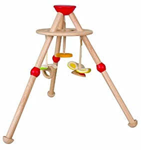 Plan Toys Planpreschool Activity Baby Gym