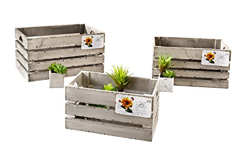 "Decorative Wooden Crate ""Postcard"", Set of Three Product SKU: HD221636"