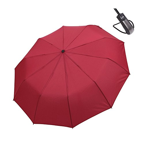 hiviolet-windproof-umbrella-compact-folding-travel-outdoor-auto-open-closeone-handed-operation-with-