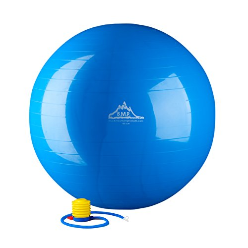 Black Mountain Products Static Strength Exercise Stability Ball with Pump, 2000 lb/75cm, Blue