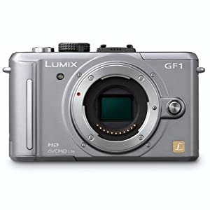 Panasonic Lumix DMC-GF1 12.1MP Micro Four-Thirds Interchangeable Lens Digital Camera (Silver Body)