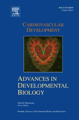 Cardiovascular Development: Advances In Developmental Biology Volume 18