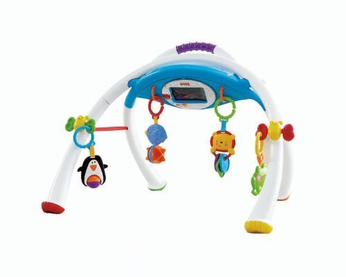 Fisher-Price Apptivity Gym back-1021096