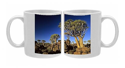 Photo Mug Of Quiver Tree Forest In Early Morning front-571222
