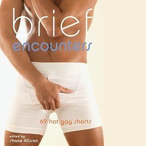 Brief Encounters: 69 Hot Gay Shorts | [Shane Allison (editor)]