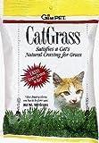 Gimborn Products CRD76200 Cat Grass Bag, 100gm