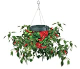 Felknor Ventures TT081112 Topsy Turvy Upside Down Hot Pepper Planter