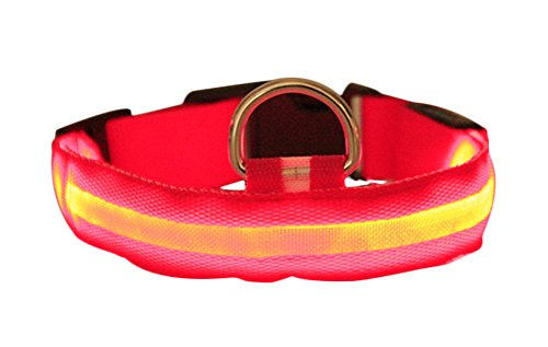 cyber-monday-freerun-pet-safety-pet-dog-puppy-led-collar-flashing-light-up-adjustable-light-nylon-co