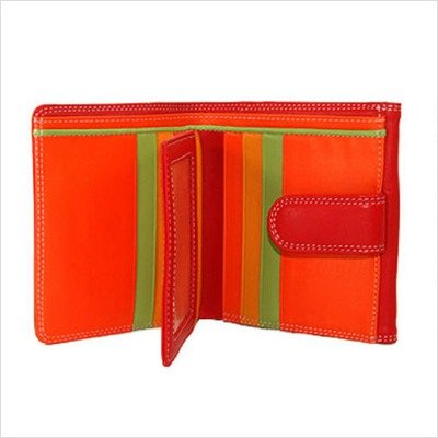 belarno-french-multi-color-wallet