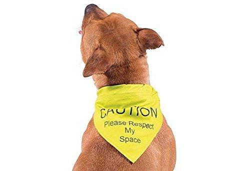 ancol-respect-my-space-warning-bandana-for-dog-small-medium-yellow