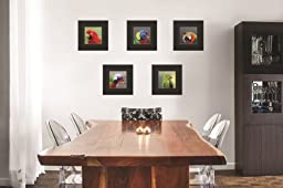 King Silk Art 100% Handmade Embroidery Colorful Parrot Chinese Print Framed Wildlife Bird Painting Gift Oriental Asian Wall Art Décor Artwork Hanging Picture Gallery Picture 31090BF