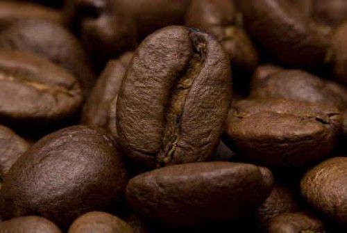 Coffee Beans - 42