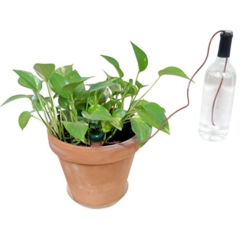 evelots indoor automatic self watering probes plant system ceramic spikes 3 pck home garden. Black Bedroom Furniture Sets. Home Design Ideas