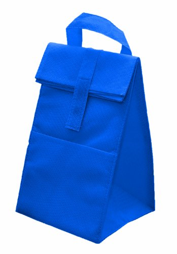 Non Woven Insulated Cooler Lunch Bag, Royal with Grey by BAGS FOR LESSTM - 1