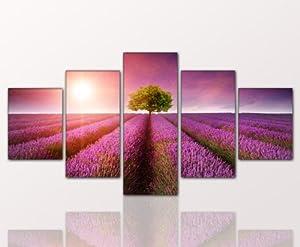 5 teiliges naturbild lavender feld xxl large g nstig modern lavender field 5teilig 80x160cm. Black Bedroom Furniture Sets. Home Design Ideas