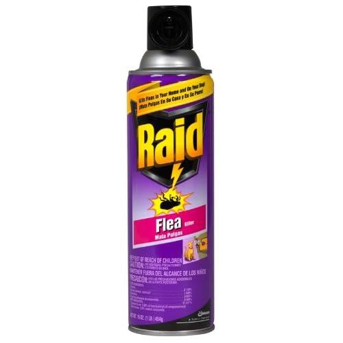 Raid SP Raid Flea Killer, 16-Ounce Cans (Pack of 6) at Sears.com