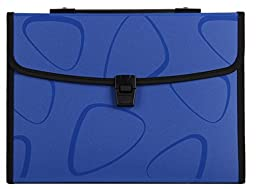 JunShop A4 Accordion Expanding File Folder,13 Pockets Expanding File Folder with Buckle Closure And with Handle (Blue)