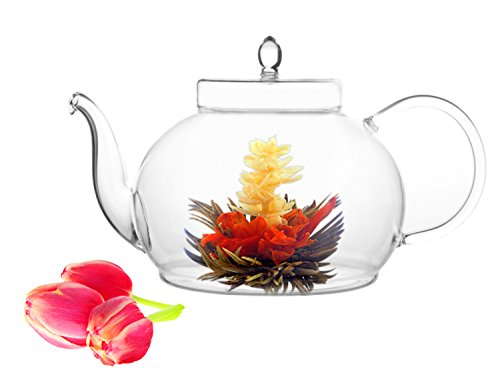 Tea Beyond Glass Teapot Polo 45 Oz Stainless Steel Strainer Non Drip Friendship Series