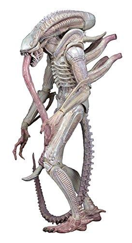 """NECA Aliens 7"""" Scale Series 9 Xenomorph ALBINO Drone Action Figure"""