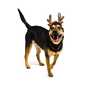 Plush Puppies LED Antlers Headband for Dogs, Large