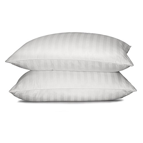 Blue Ridge Home Fashion Supreme 350 Thread Count Cotton Damask White Down Pillow, Jumbo, White (Blue Ridge Home Fashions Inc compare prices)