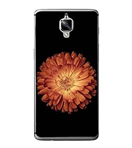 Beautiful Flower 2D Hard Polycarbonate Designer Back Case Cover for OnePlus 3 :: OnePlus Three