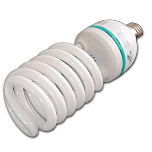 Watt Compact Fluorescent Daylight Balanced Light Bulb: Camera & Photo