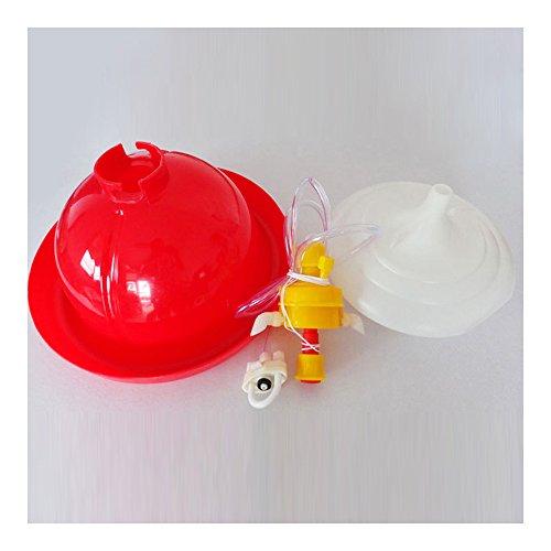 Spessore Pollo Anatra Oca Plasson tipo automatico Waterer bevitore