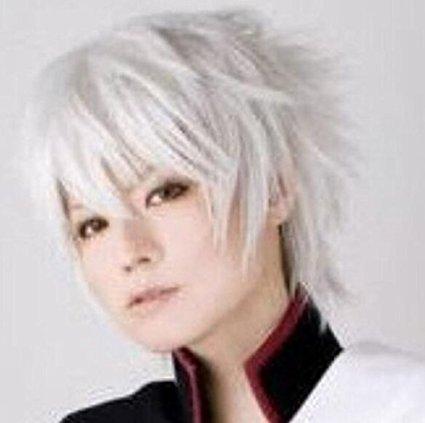 Futue (Short Grey Wig)