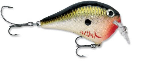 For Sale Rapala Dives-To Fat 01 Fishing lure, 2.75-Inch, Bleeding Olive Shiner