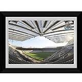 Newcastle United FC. 'St. James Park' Framed Picture - 16