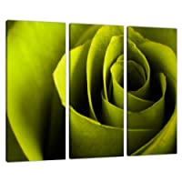 Three Lime Green Canvas Pictures Wall Art Bed Living Room Prints 3110 from Wallfillers Canvas