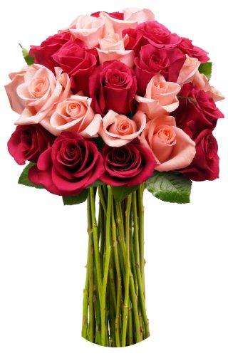 Benchmark Bouquets 2 Dozen Blushing Beauty Roses, …