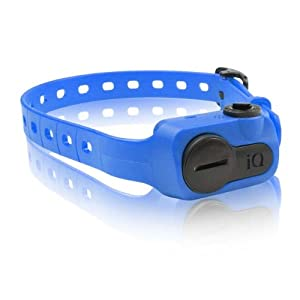 Dogtra IQ Bark Collar, Blue by Dogtra