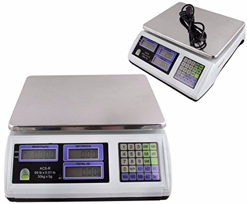 TMS 2 X Digital Weight Scale 60LB Computing Food Meat Scale Produce Deli Industrial (Industrial Food Scale compare prices)