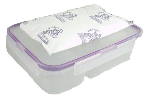 Snapware Airtight 2-Compartment Leakproof, Easy-Open Bento Lunch Box Storage Container With Nordic Ice 8 Oz Freezer Ice Pack. Bpa-Free. Microwave Safe - Bundle 2 Items