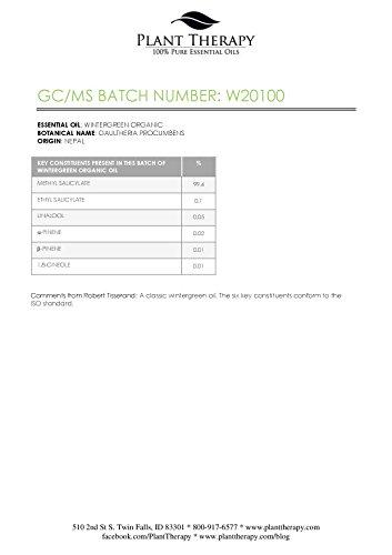 USDA-Certified-Organic-Wintergreen-Essential-Oil-10-ml-13-oz-100-Pure-Undiluted-Therapeutic-Grade