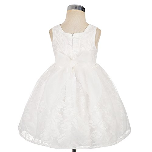 Dressy Daisy Baby Girls' Floral Lace Overlay Flower Girl Dresses Pageant Birthday Occasion Dress Size 12-18 Months White