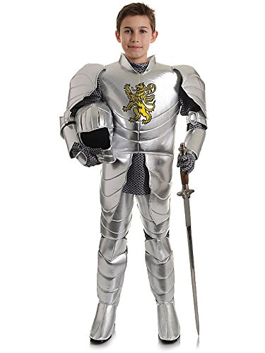 Lion Crested Knight Kids Costume