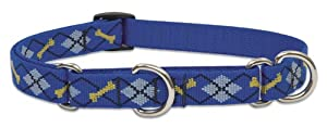 Lupine 3/4-Inch Dapper Dog 14-20-Inch Martingale Combo Collar for Medium to Large Dogs