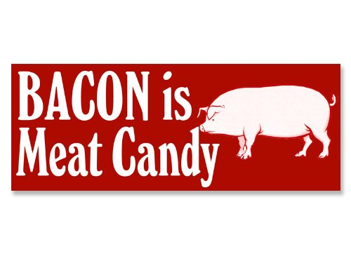 Bacon is Meat Candy Bumper Sticker