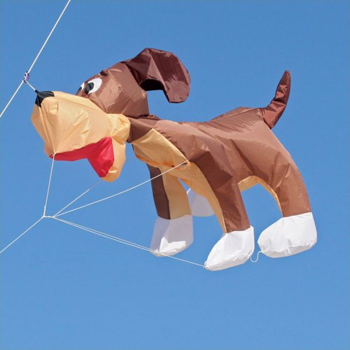 Dog Henry Hound, 8 ft. Kite Line Laundry